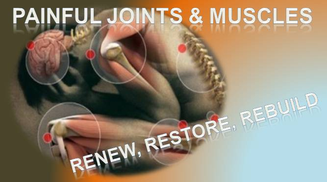 Natural Supplements for Muscles, Joints and Bone