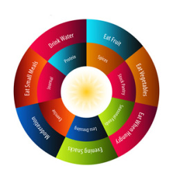 The healthy diet wheel Natural Health Supplements